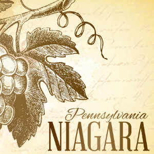 niagara label