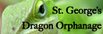 St. George's Dragon Orphanage Logo