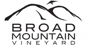 Broad Mountain Vineyard Winery
